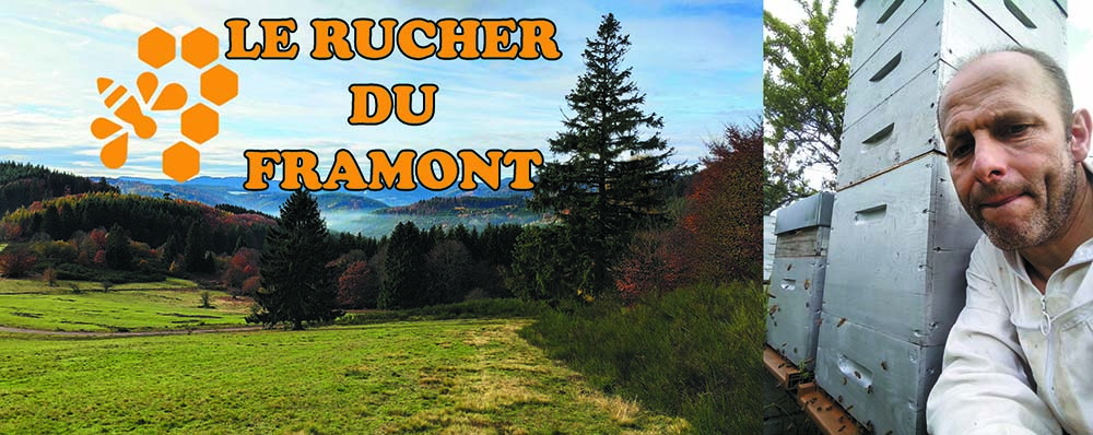 Rucher-du-Framont (2)